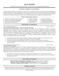 Expert Witness Resume Example by Insurance Manager Resume Example Product Manager Advice Bank