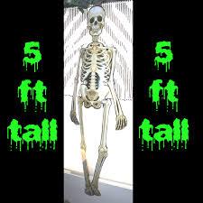 Halloween Skeleton Props by Life Size Skeleton Bones Halloween Party Wall Door Decorations