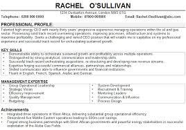 Order the above IT management CV template now berathen Com
