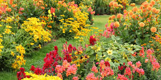 Fall Landscaping Ideas by 25 Best Fall Flowers U0026 Plants Flowers That Bloom In Autumn