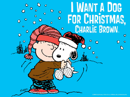 charlie brown thanksgiving tv i want a dog for christmas charlie brown movies u0026 tv on google play