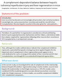 thesis methodology FAMU Online Term paper methodology