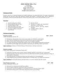 Professional Resume Examples  accounting sample accountant resume     Accounting Sample Accountant Resume   professional resume examples
