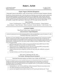Executive Summary Resume Example Template Sample Resume Of Executive Director How To Write A Graduate Essay