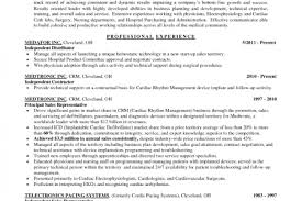 Regional Sales Sales Manager Resume Objective Examples Sales Resume Reentrycorps