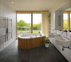 bathroom interior design tryonshorts with image of luxury bathroom