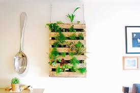 12 amazing ideas for indoor herb gardens