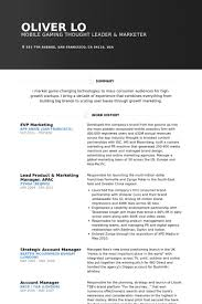 Online Marketing Manager Resume by Vp Marketing Resume Samples Visualcv Resume Samples Database