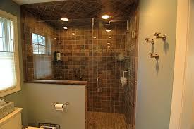 Small Shower Bathroom Small Bathrooms With Showers Bathroom Decor