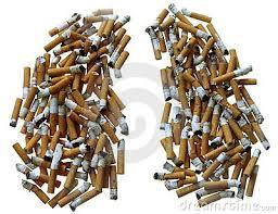 Pulmones de tabaco