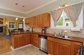 Kitchen Cabinets Mahogany Wooden Kitchen Countertops Pros Cons White Mini Pendant Lighting