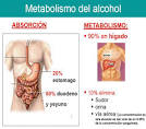 METABOLISMO DEL <b>ALCOHOL</b>