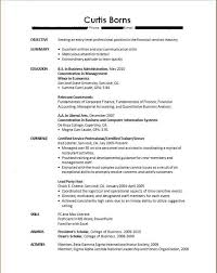 The Best Resume In The World resume executive summary samples free resumes tips
