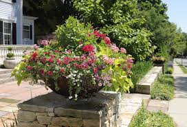 container flower gardening u2013 information about thrillers fillers