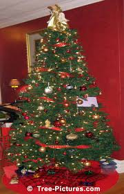 christmas tree decorated in red and gold picture