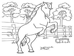 horse color sheet for kids education kiddo shelter