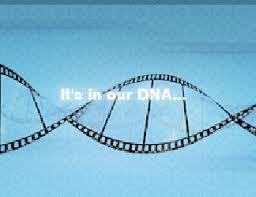 DNS FILM