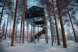 this impressive treetop hotel by snøhetta u0027floats u0027 above a forest