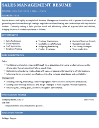 Resume for a sales manager position