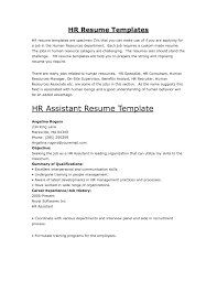 Qualifications Summary Resume Example by Example Resume Profile Statement Free Resume Example And Writing