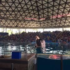 seaworld black friday deals seaworld san antonio 785 photos u0026 386 reviews amusement parks