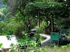 Naples Botanical Garden Bali Tour