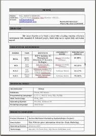 Computer Science Student Resume  computer science student resume     happytom co