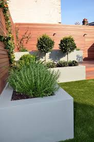 Front Garden Design Ideas Low Maintenance The 25 Best Low Maintenance Garden Ideas On Pinterest Low