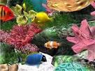 วอลเปเปอร์ตู้ปลาสุดสวย Aquarium 3D 1