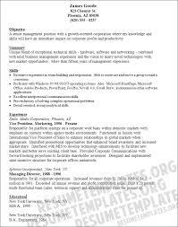 Resume Examples For Vp Of Sales Engineering Resume Examples O Resumebaking Vice President Operations Resume Sample