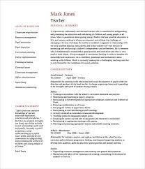 cleaner cv template