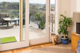 cat hits glass door images glass door interior doors u0026 patio doors