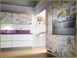 Kitchen Cabinet Doors Replacement Replacement Kitchen Cabinet Doors With Glass Home Design Ideas