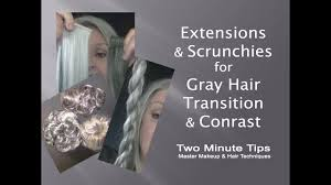 Grey Human Hair Extensions by Extensions U0026 Scrunchies For Gray Hair Transition U0026 Contrast B