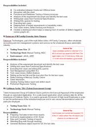 Draft A Professional Resume  resume templates resume surgeon     you need an exceptional professional resume from the best