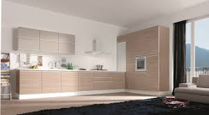 Modern European Kitchen Cabinets Elegant Design European Kitchen Cabinets Making European Kitchen