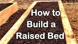 House Plans That Are Cheap To Build by How To Build A Raised Garden Bed With Wood Easy Ez U0026 Cheap