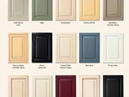Tampa Kitchen Cabinets Cabinet Doors Amazing Cupboard Doors Kitchen Custom Kitchen