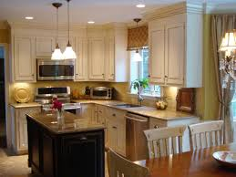 kitchen cabinets remodeling ideas photo 9 painted kitchen cabinet