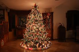 Christmas Tree Ideas 2015 Diy Building The Most Beautiful Christmas Tree Time Lapse Youtube