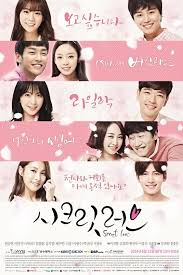 Kara secret love (2014) capitulos