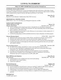 Executive Resume  amp  Professional Resume Samples happytom co