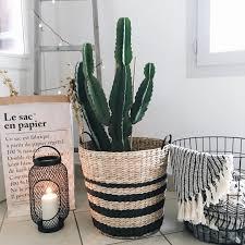 maison du monde coussin de sol home inspiration cactus echelle en bois maisons du monde