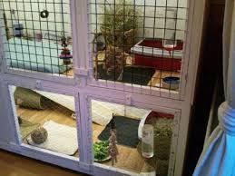 81 best bunny habitats images on pinterest rabbit cages bunny