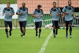 Botafogo realiza partida em Cariacica. Veja como comprar os ...