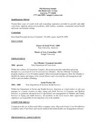 Examples Of Resumes First Job Resume Samples Free Resumes Tips It Tech Sam Splixioo