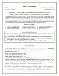 Officer Resume Executive Resume Examples 12 Global Operations Director Coo Chief