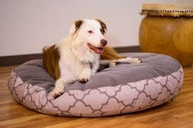 bedroom divine blog indestructible dog bed lifetime guarantee