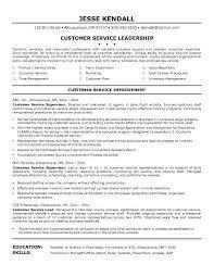 Customer Service Representative Resume Objective     Jobcoke com