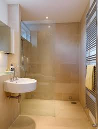 Bathroom Style Ideas Breathtaking Master Bath Ideas No Tub Pictures Design Ideas